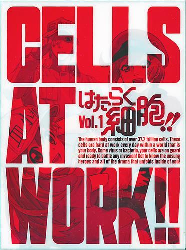 はたらく細胞!! Vol.1 【DVD】