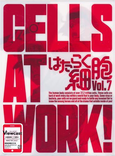 はたらく細胞 Vol.7 【DVD】